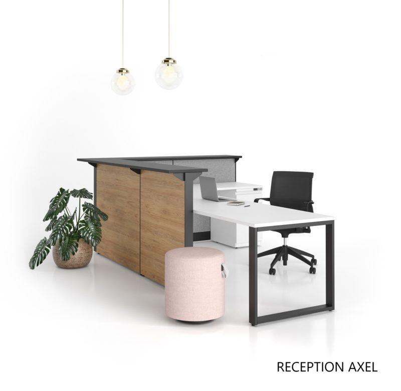 Artopex reception Axel02 1